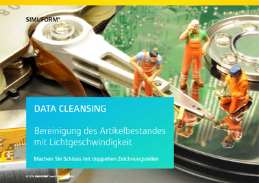 Download: Broschüre DATA CLEANSING